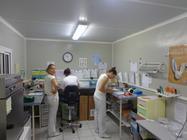 Préparation semence